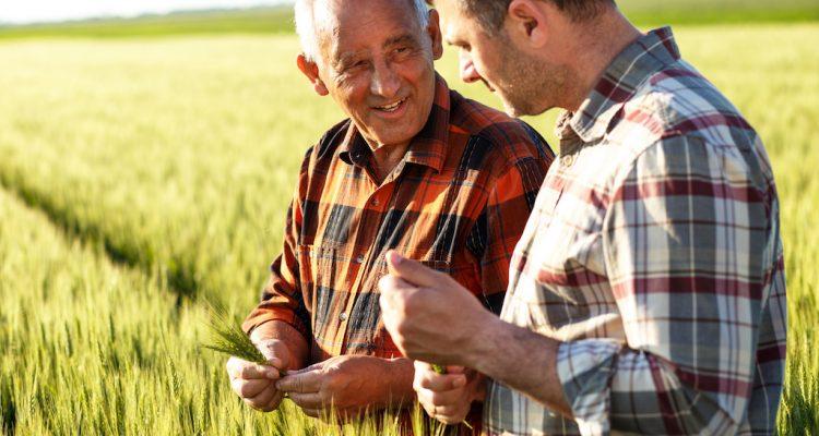 田舎の老人と若者